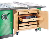 Cabinet with tablesaw