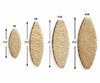 Common biscuit sizes