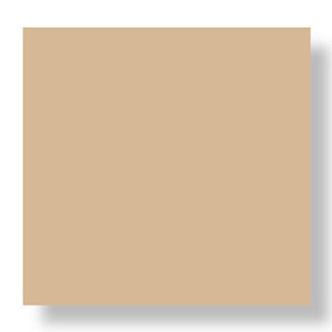 Tan color square with drop shadow
