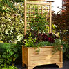 Trellis on planter box