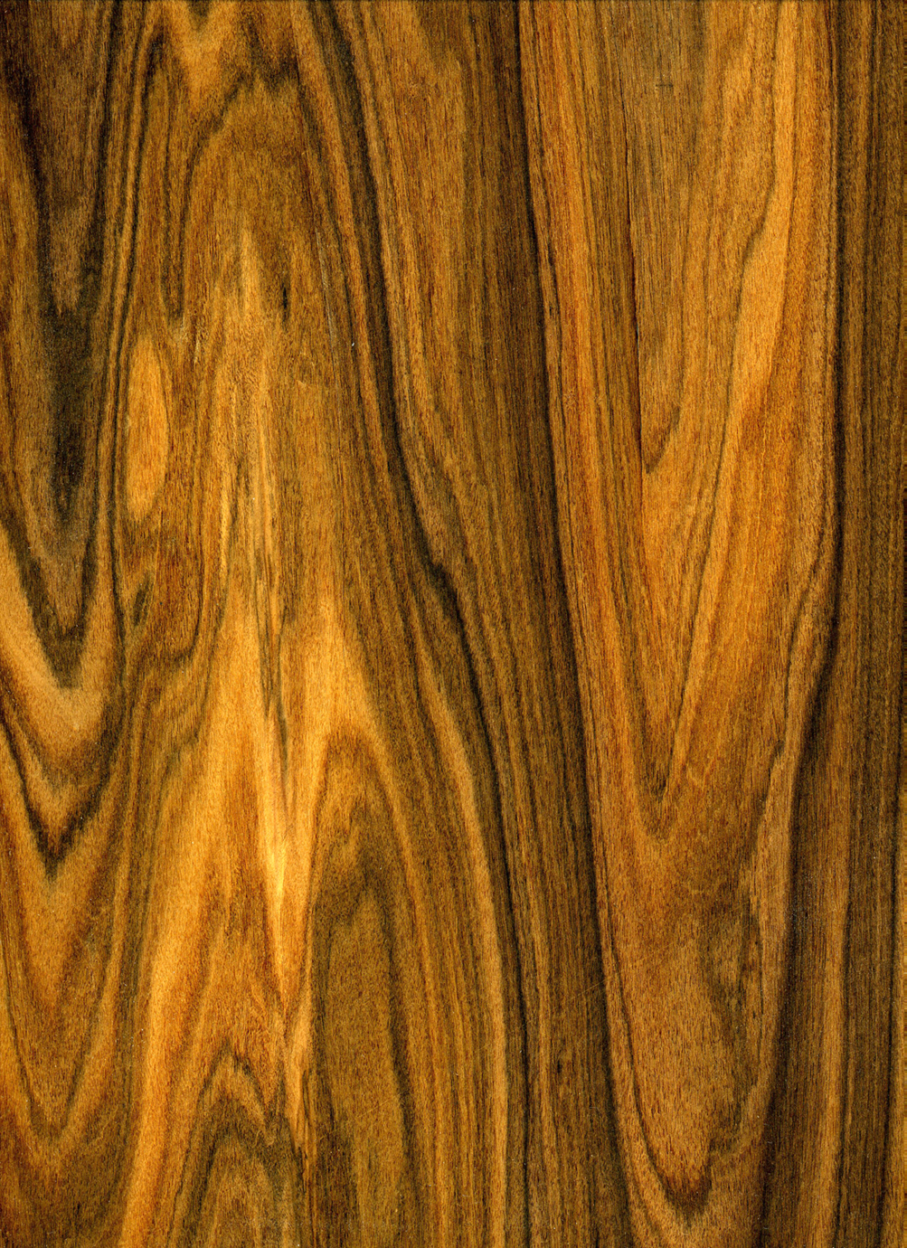 exsotic wood