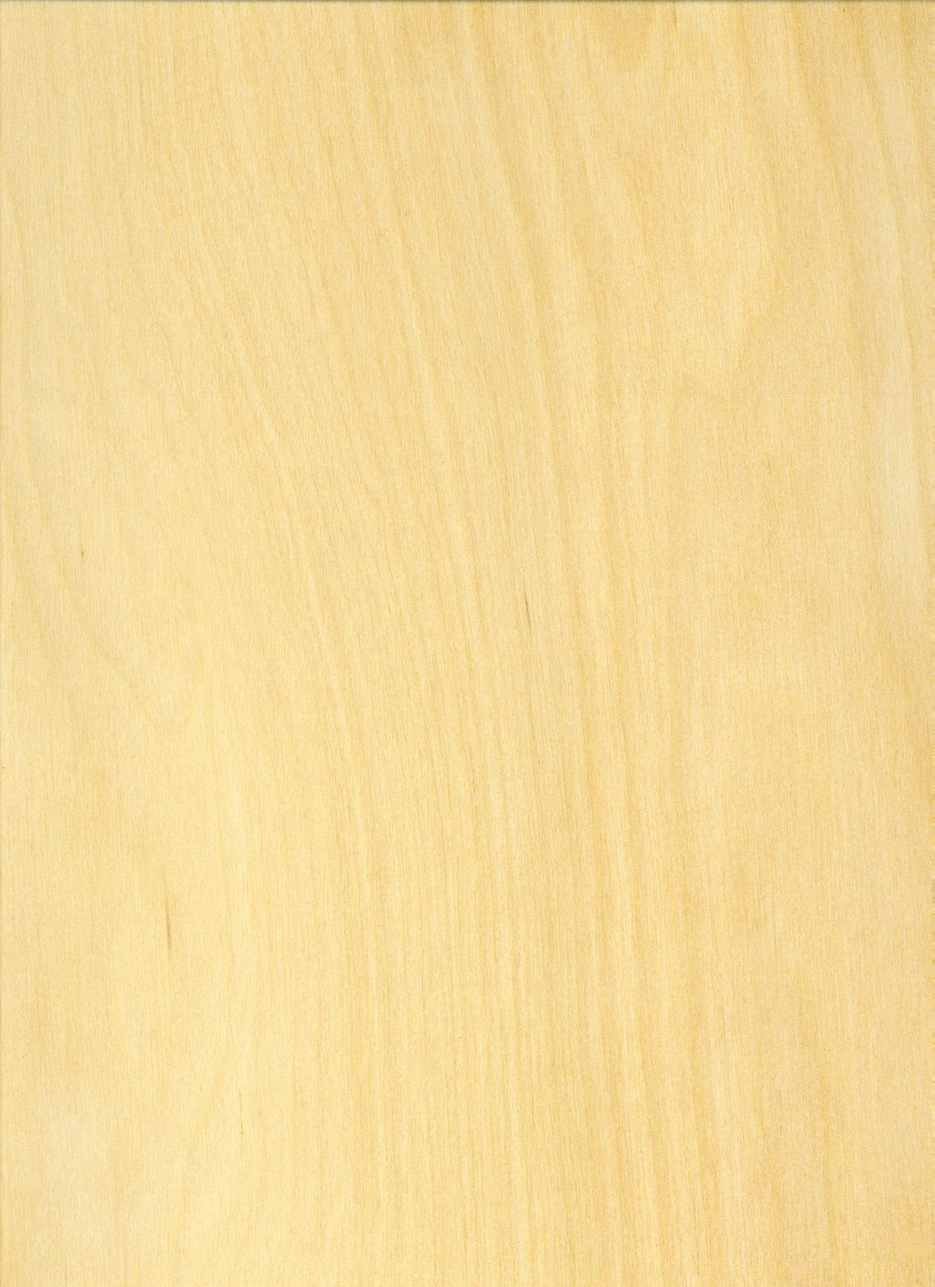 Maple Wood Grain Pattern