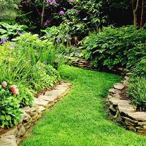Awesome Line Is One Of The Most Important And Useful Of All Design Elements.  Everything In The Garden Involves Line. Think About The Trunk Of A Tree, ... Great Ideas