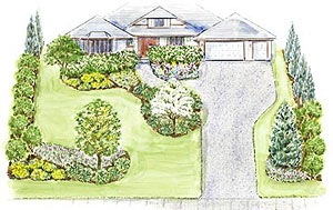 Merveilleux Our Free Planting Guide For This Landscape Plan Includes A Larger Version  Of The Illustration, A Detailed Layout Diagram, A Set Of Five Regional  Plant Lists ...