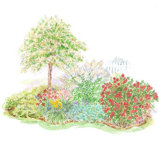 Clay Soil Garden