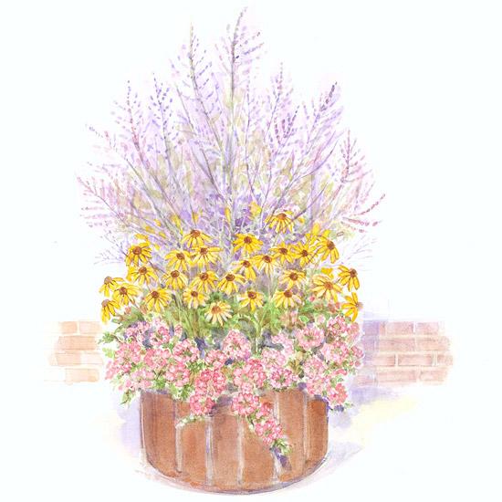 Easy Mixed Container Garden