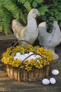 Sunflower Baskets