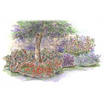 Shade garden plans annual garden for shade mightylinksfo Gallery