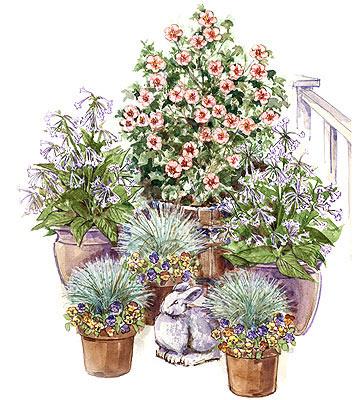 Multiple Pots Container Garden