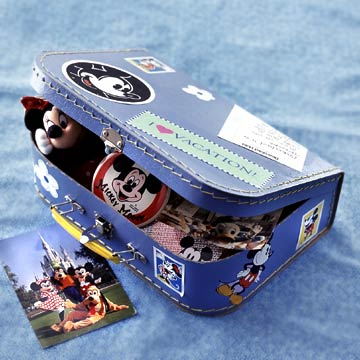 Souvenir Storage Case