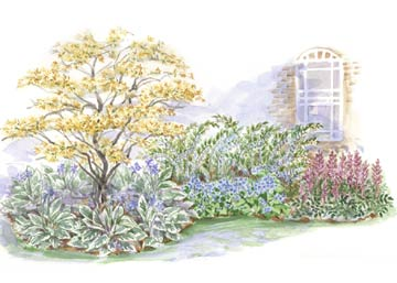 beginner garden for shade - Shade Garden Design Ideas