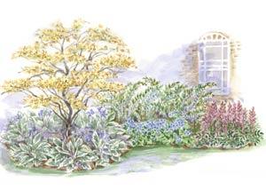 beginner garden for shade - Shaded Flower Garden Ideas