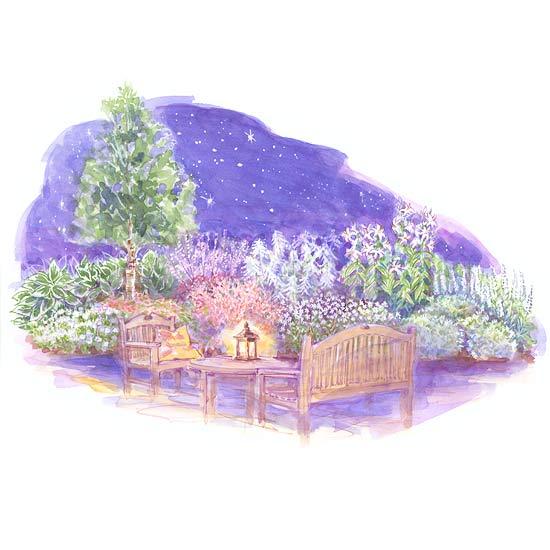 Medium Size Garden Plans
