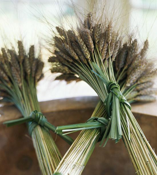Fall Dried Wheat Bundles