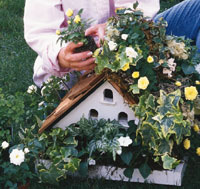Turn Your Birdhouse into a Planter