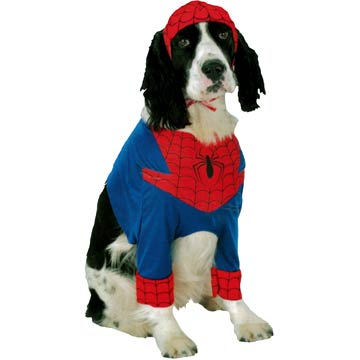Spider-Man Dog