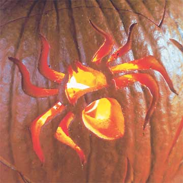 Spiderama Pumpkin