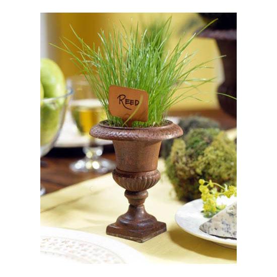 Urn Gardening