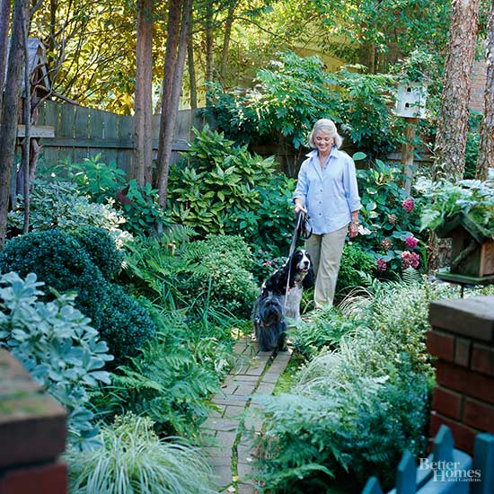 Woodland Shade Garden Backyards