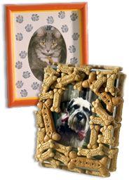 Perfect Pet Frames