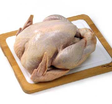 Basic Chicken Information