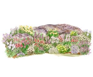 Long Blooming Rock Garden Plan