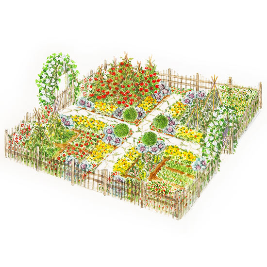 An eye catching kitchen garden plan for 60 ft garden design