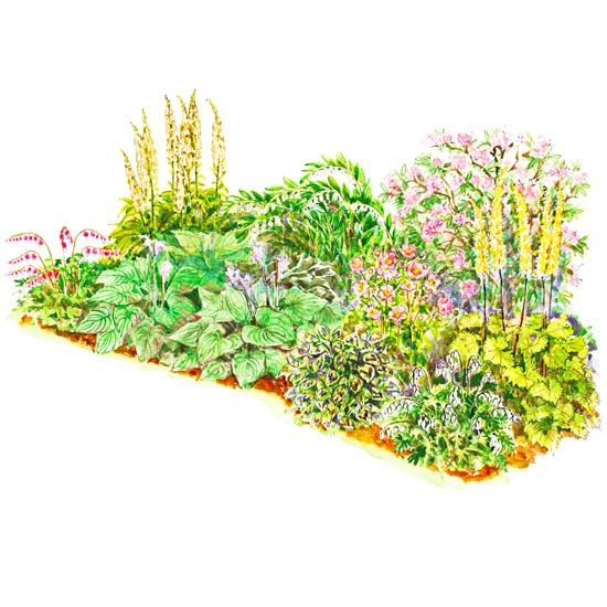 Soft color shade garden plan for Shade garden design zone 4
