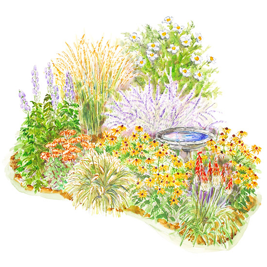 A simple late summer perennial garden plan for Free perennial flower garden designs