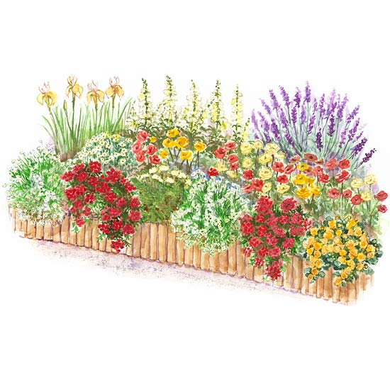 Hot color flower garden plan for Free perennial flower garden designs