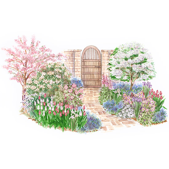 Fragrant Spring Bulb Garden Plan