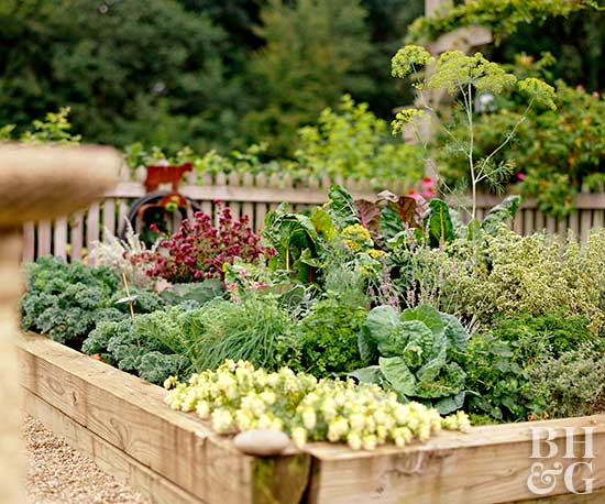 how to plant a vegetable garden - Garden Design Vegetable