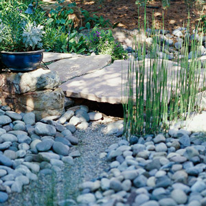 A Dry Creek Bed Offers A Soothing, Natural Look In A Garden.
