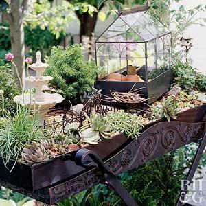 Make a miniature garden for Tray garden designs