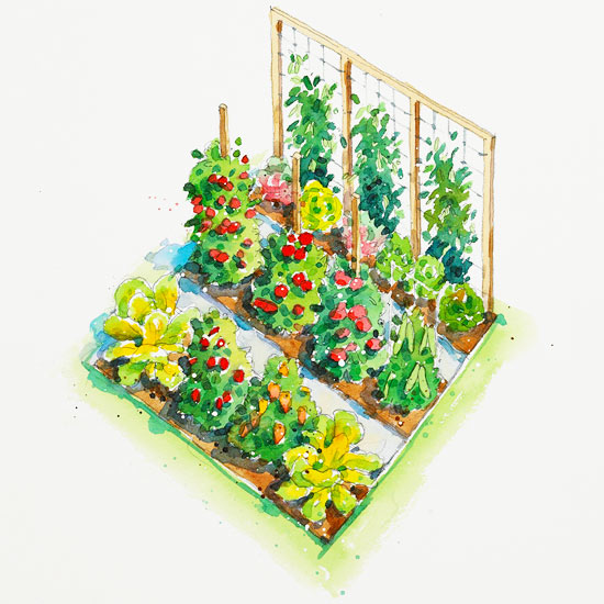 All american vegetable garden plan for Planning your vegetable garden