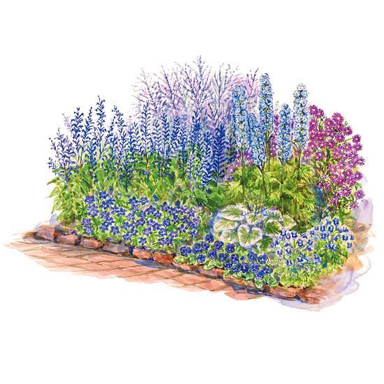 Blue theme garden plan for Cottage garden design zone 5