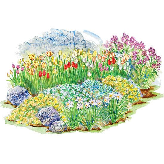 Spring Show Garden Plan