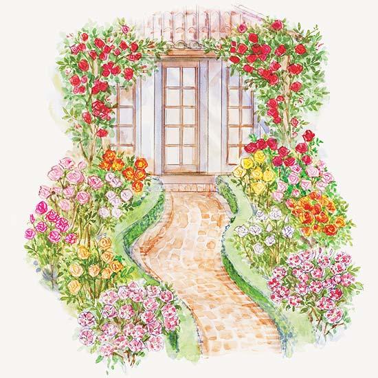 Front-Yard Rose Garden Plan
