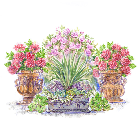Plans For Container Gardens