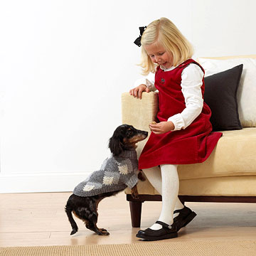 Knit an Argyle Dog Sweater