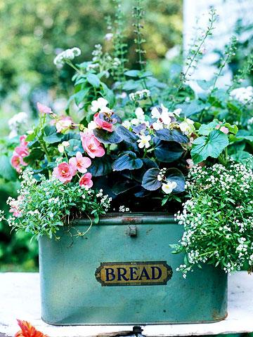 Bread Box Container Gardens