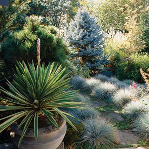 Perennials 5 ways to landscape with ornamental grass mightylinksfo