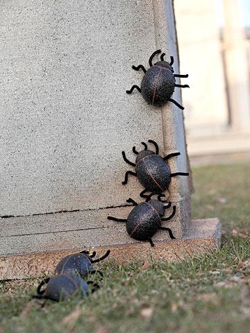 Easy-to-Make Scarab Beetles