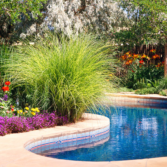 5 Ways To Add Landscape Lighting To Concrete Hardscaping: 15 Ways To Use Ornamental Grasses In Your Landscape