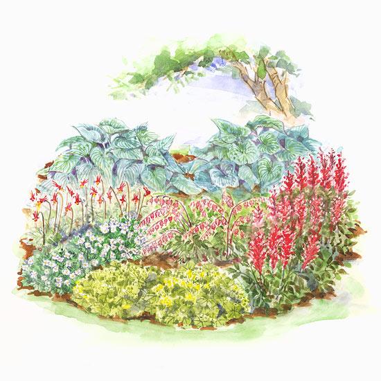 Cold climate shade garden plan for Shade flower garden designs