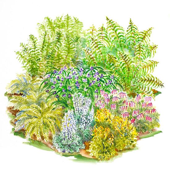 Free Garden Plan