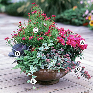 Attractive Recipes For Beautiful Container Gardens