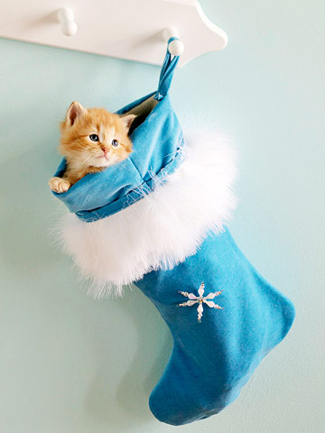 Make a Blue Christmas Stocking
