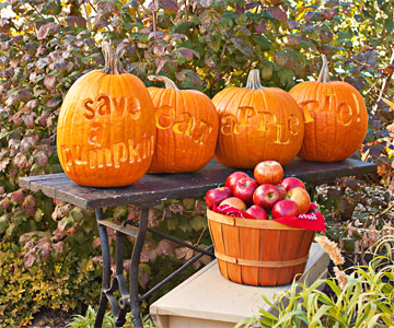 Create Pumpkins that Make a Statement