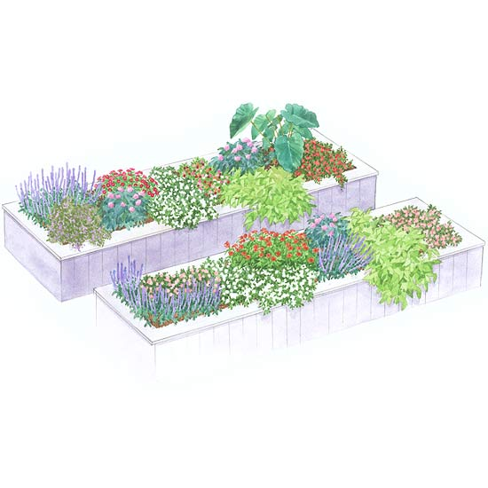 Raised beds garden plan for Raised bed garden designs plans